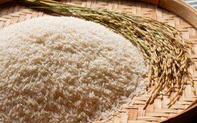Biar Tambah Langsing, Yuk Ganti Karbohidrat Dengan 5 Bahan Makanan Ini!