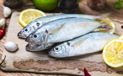Bukan Hanya Cek Mata dan Insang, Ini Tips Lain Memilih Ikan Yang Harus Diketahui